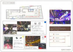 VILLATOKYO-visionsystem-
